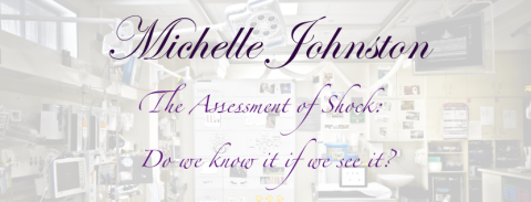 MICHELLE JOHNSTON on THE ASSESSMENT OF SHOCK