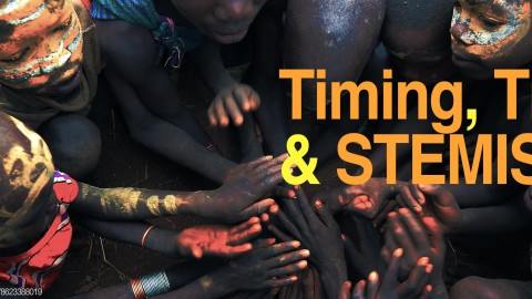 Brazil — Timing, Tribes and STEMIs