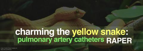 Pulmonary Artery Catheters by Raper