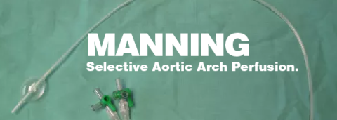Selective Aortic Arch Perfusion – Jim Manning