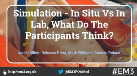 Simulation – In Situ Vs In Lab, What Do The Participants Think?